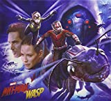 Marvel's Ant-Man and the Wasp: The Art of the Movie